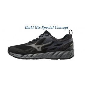Chaussures De course Running Mizuno IBUKI Femme Gtx