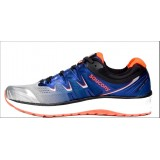 Chaussures De Course Running  Saucony Triumph Iso V4 Homme