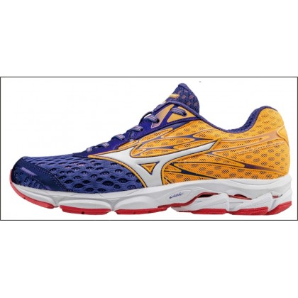 Chaussures De Course Running  Mizuno Wave Catalyste V2 Homme