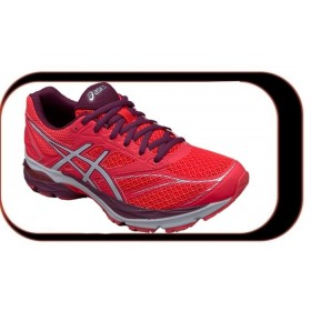 Chaussures De Course Running  Asics Gel Pulse....V8 Femme